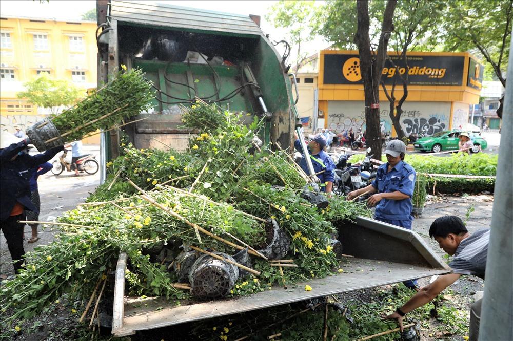 Nông dân rơi nước mắt 'tiễn' hoa ế lên xe rác, dứt khoát không xin cho - Ảnh 4
