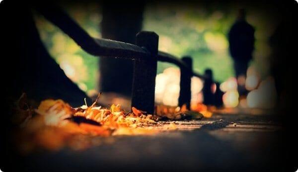 Trong cuộc sống này, tâm chứa điều gì cuộc đời sẽ kết duyên với điều đó - Ảnh 3