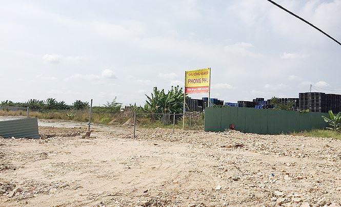 Chính thức thanh tra dự án khu công nghiệp Phong Phú - Ảnh 1