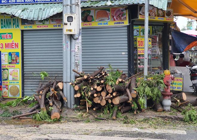 Cây xanh bật gốc đè bẹp xe máy trong cơn mưa lớn ở Sài Gòn, may mắn không có ai bị thương - Ảnh 4