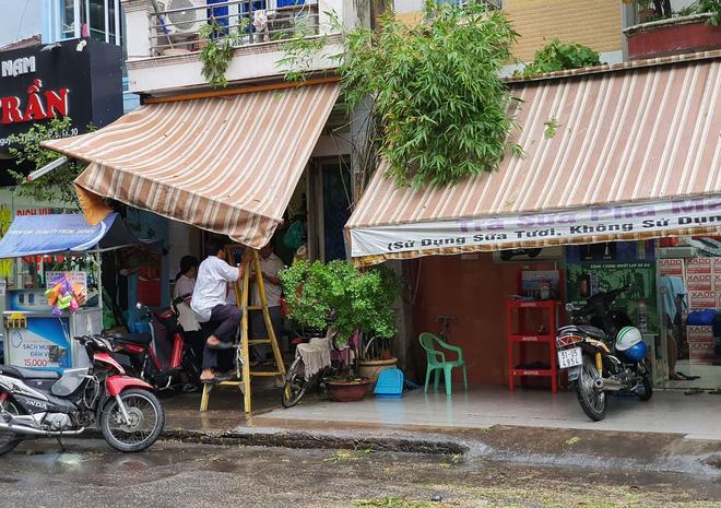 Cây xanh bật gốc đè bẹp xe máy trong cơn mưa lớn ở Sài Gòn, may mắn không có ai bị thương - Ảnh 6