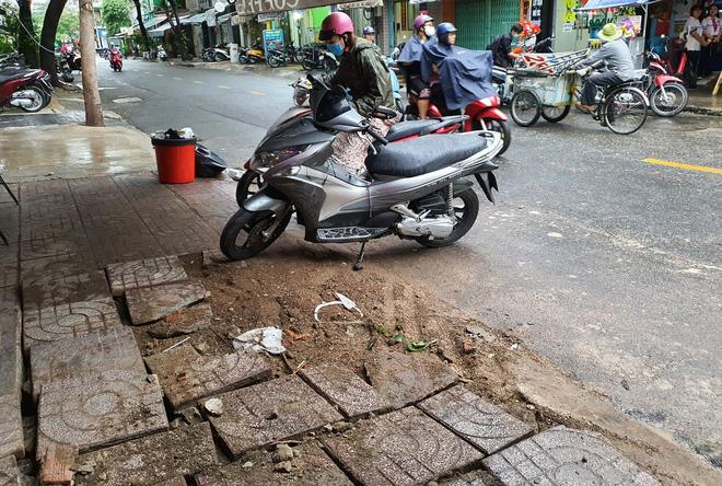 Cây xanh bật gốc đè bẹp xe máy trong cơn mưa lớn ở Sài Gòn, may mắn không có ai bị thương - Ảnh 7