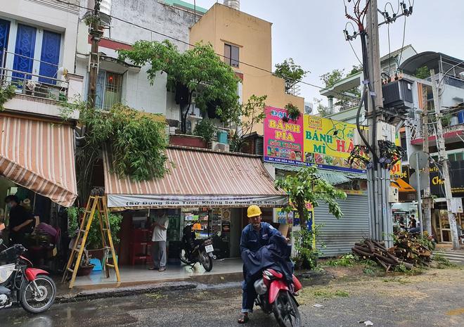 Cây xanh bật gốc đè bẹp xe máy trong cơn mưa lớn ở Sài Gòn, may mắn không có ai bị thương - Ảnh 9
