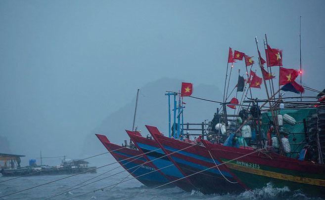 Bão số 2 đã đổ bộ vào Hải Phòng-Nam Định với gió giật cấp 11 - Ảnh 1