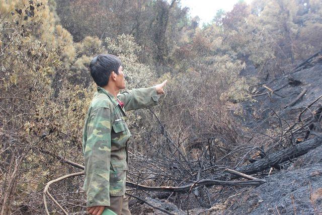Người đàn ông đặc biệt trong vụ cháy rừng kinh hoàng ở Hà Tĩnh - Ảnh 2
