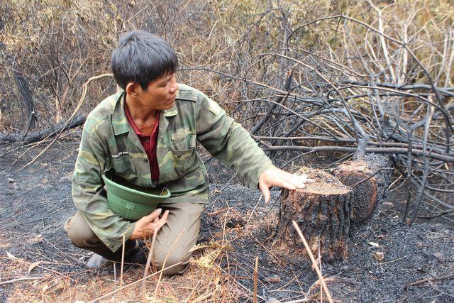 Người đàn ông đặc biệt trong vụ cháy rừng kinh hoàng ở Hà Tĩnh - Ảnh 3