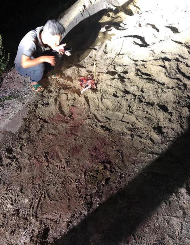 Bé trai 7 tuổi bị 10 con chó lao vào tấn công ở Hưng Yên đã tử vong - Ảnh 1