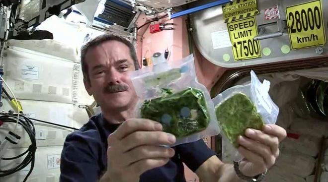 13 ngày áp dụng chế độ ăn kiêng Phi hành gia, bạn có thể giảm tới 9kg và loại bỏ các vấn đề về dạ dày - Ảnh 2