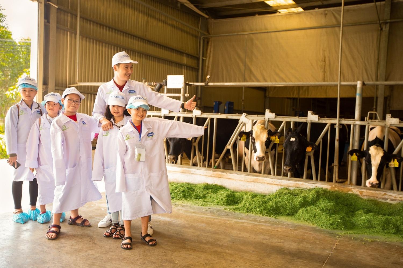 Tận mắt thấy những cô bò ở 'Resort' góp công vào ly sữa học đường - Ảnh 2