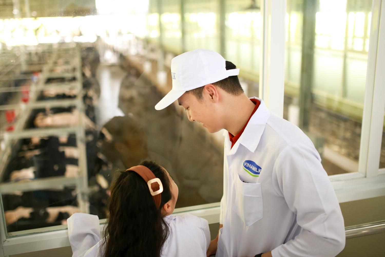 Tận mắt thấy những cô bò ở 'Resort' góp công vào ly sữa học đường - Ảnh 3