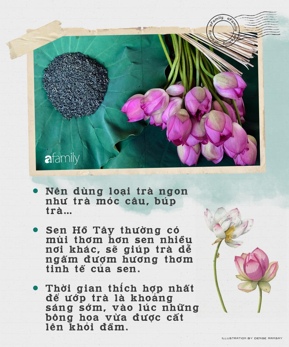 Cô gái Hà Nội hướng dẫn cách ướp trà sen thơm ngát chuẩn ngon đến người lười cũng làm theo được - Ảnh 2