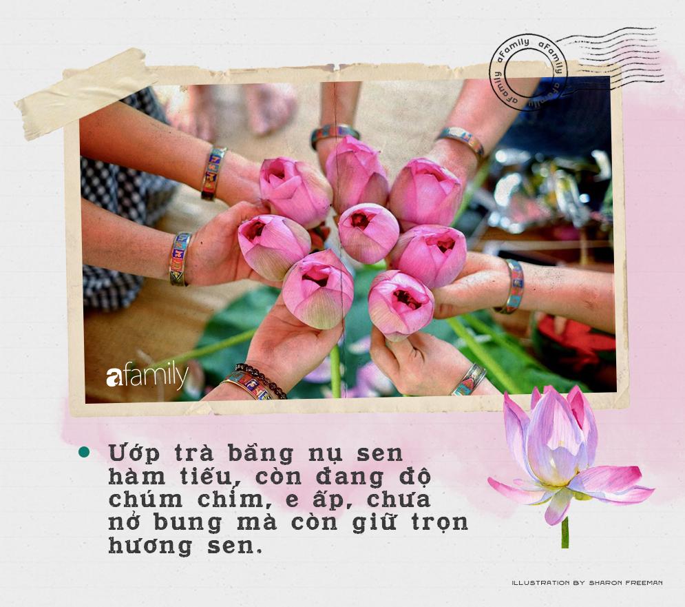 Cô gái Hà Nội hướng dẫn cách ướp trà sen thơm ngát chuẩn ngon đến người lười cũng làm theo được - Ảnh 3