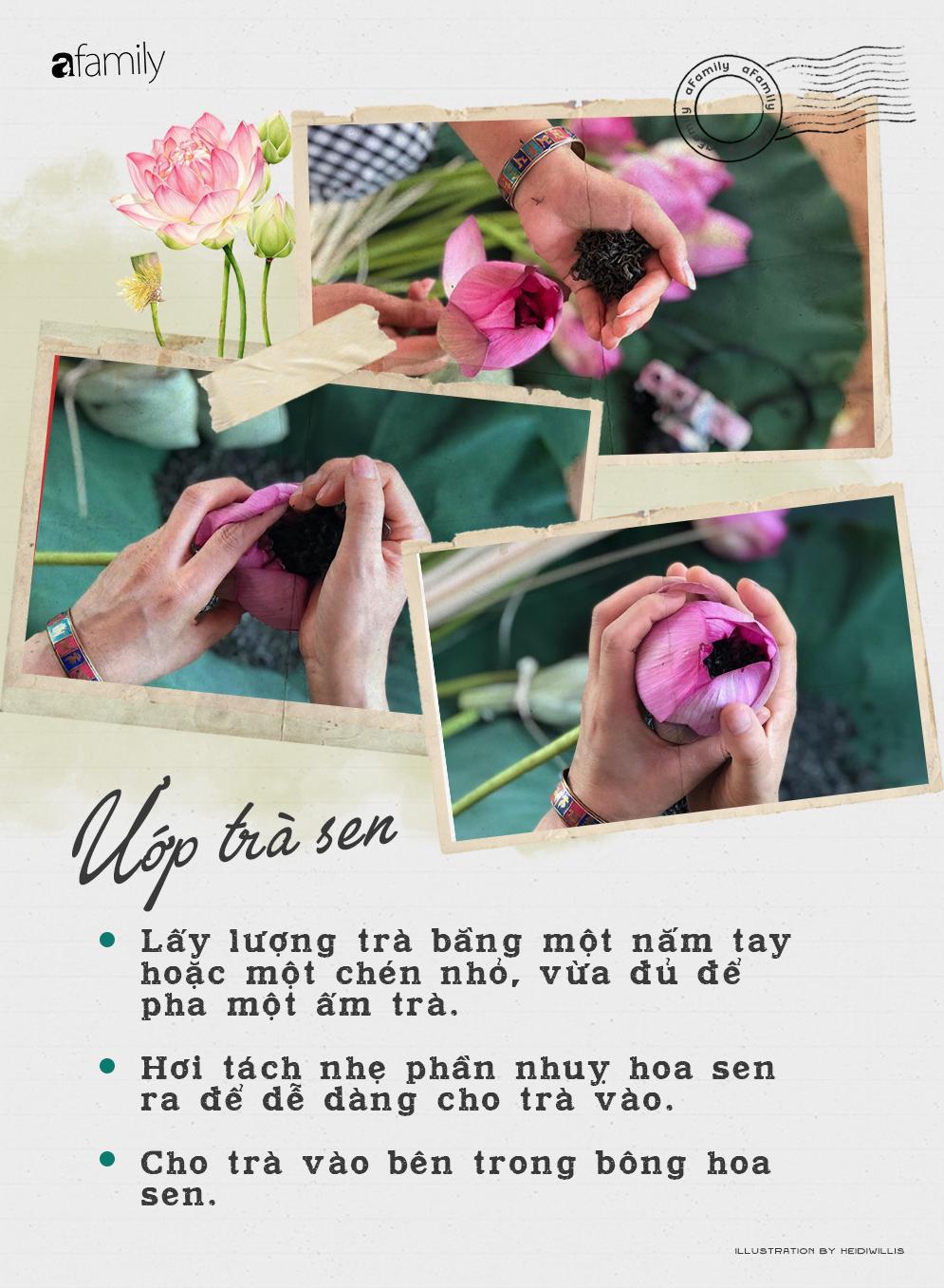 Cô gái Hà Nội hướng dẫn cách ướp trà sen thơm ngát chuẩn ngon đến người lười cũng làm theo được - Ảnh 5