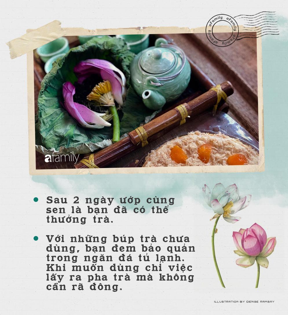 Cô gái Hà Nội hướng dẫn cách ướp trà sen thơm ngát chuẩn ngon đến người lười cũng làm theo được - Ảnh 9