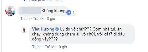 Bị chửi khùng, chảnh chọe, giả tạo, Việt Hương khiến anti-fan câm nín khi đáp trả thâm thúy - Ảnh 3