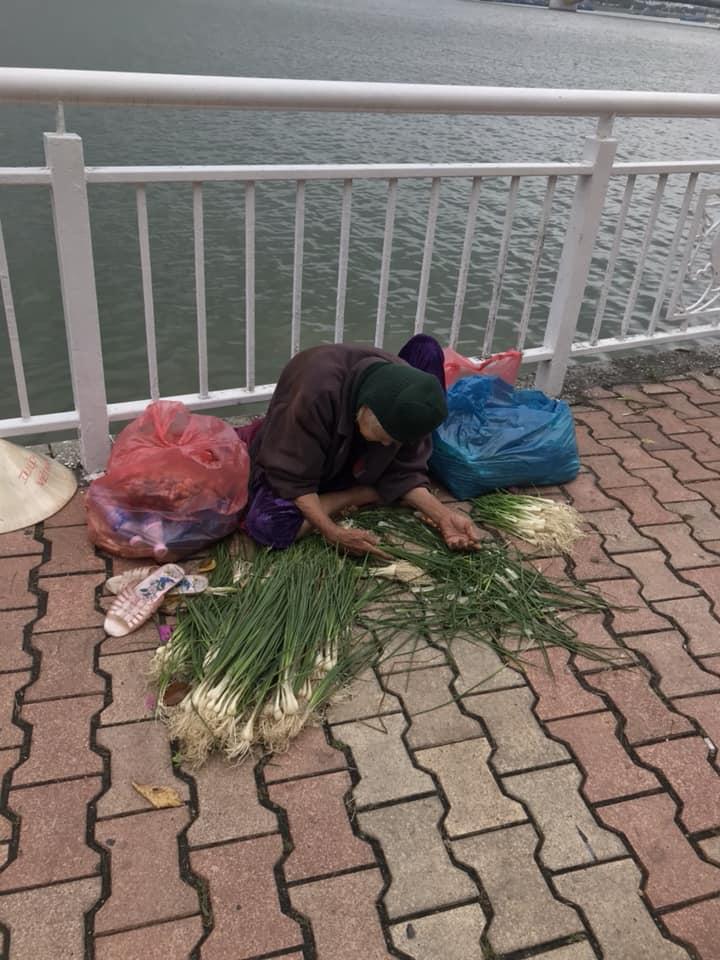 Clip bà cụ nhặt từng cọng hành kiếm sống qua ngày ở Đà Nẵng