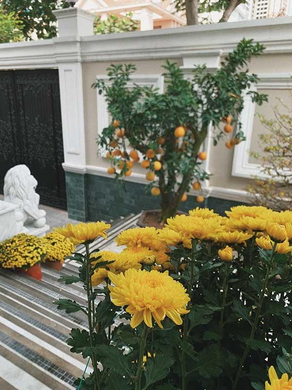 Tăng Thanh Hà khoe khéo biệt thự triệu đô ngập tràn sắc hoa đón Tết - Ảnh 4