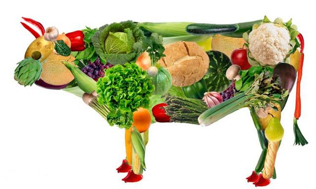 Ăn cơm sai cách, bạn đang ngây thơ tự sát mà không biết, hãy học cách ăn cơm đúng để sống lâu, sống khỏe - Ảnh 3