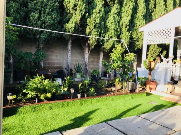 Hé lộ không gian nhà vườn giản dị của ca sĩ Hương Lan ở Mỹ - Ảnh 9