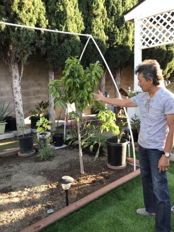 Hé lộ không gian nhà vườn giản dị của ca sĩ Hương Lan ở Mỹ - Ảnh 11
