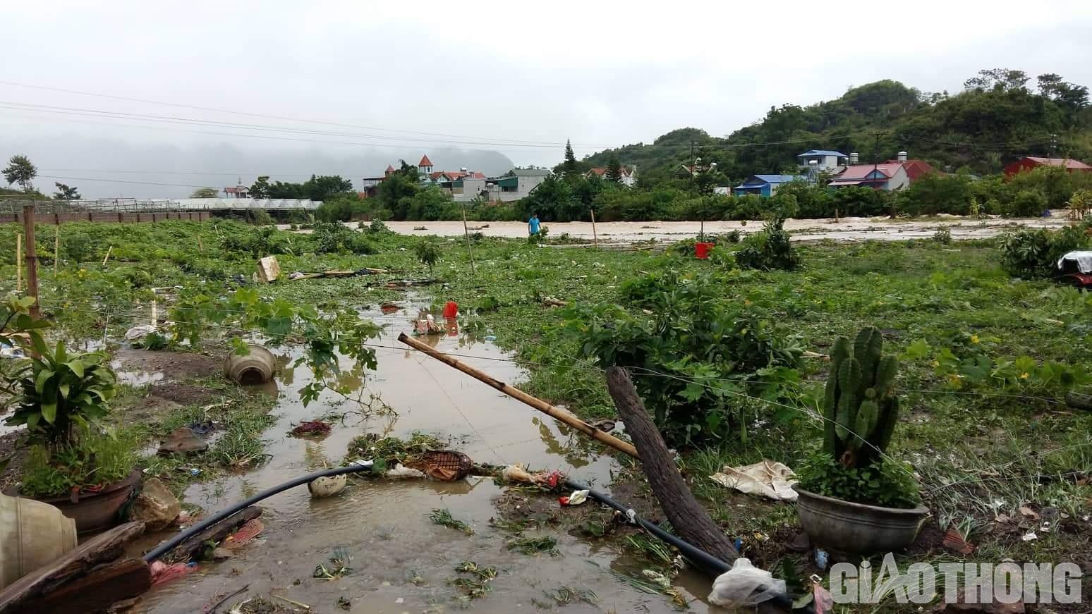 Mưa lũ khiến 1 người chết, hàng trăm ngôi nhà ở Sơn La bị ngập sâu - Ảnh 9