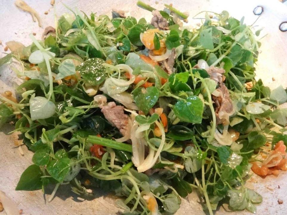 Có loại rau đắt hơn thịt, châu Âu, Trung Quốc tôn thảo dược quý chữa bệnh cực tốt, người Việt chỉ coi là cỏ dại - Ảnh 2
