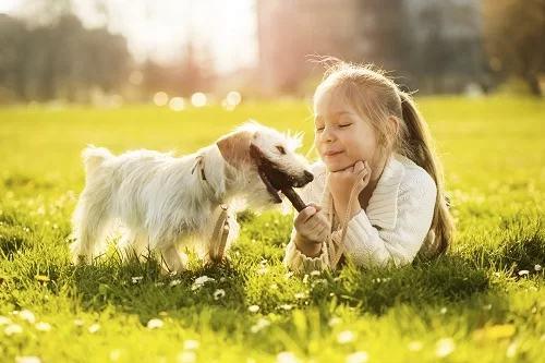 Năm lợi ích khi cho trẻ nuôi thú cưng - Ảnh 1