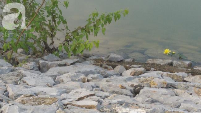 Vụ bà nhẫn tâm sát hại cháu ở Nghệ An: Bí ẩn 'hoa cúng' nghi can mang theo ra hiện trường - Ảnh 1