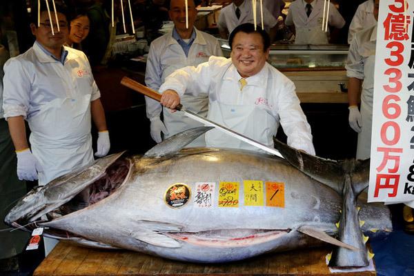 Cận cảnh con cá ngừ 'khủng', giá hơn 71 tỉ đồng - Ảnh 1