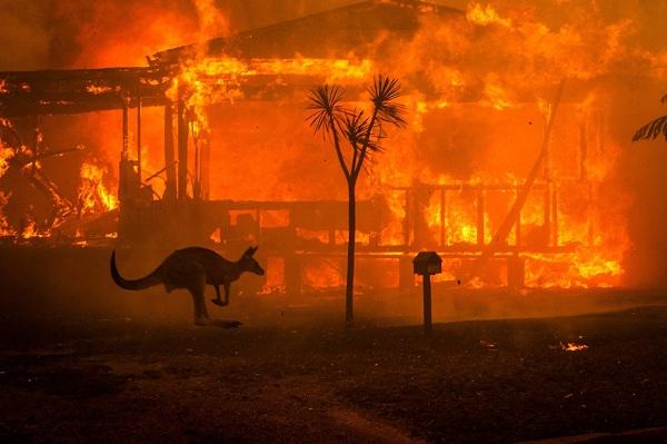 Bầu trời nước Úc đỏ như máu trong ngày thảm họa cháy rừng - Ảnh 3