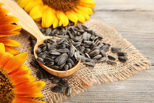 6 loại hạt ai cũng ăn dịp Tết là loại thuốc 'quý hơn vàng' nhưng cần phải biết điều này - Ảnh 1