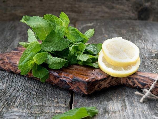 4 công thức pha chế nước chanh giúp thanh lọc cơ thể và giảm cân - Ảnh 2