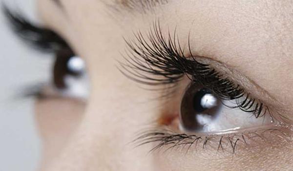 4 hỗn hợp tự nhiên giúp kích thích lông mi mọc dài hơn - Ảnh 1