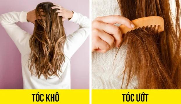 7 lý do vì sao bạn không bao giờ nên để tóc ướt đi ngủ - Ảnh 2