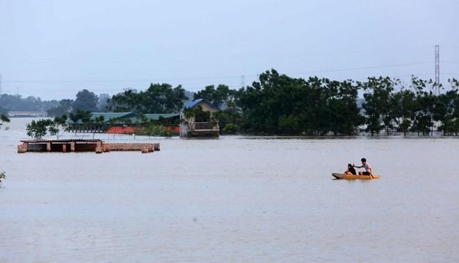 Cẩn trọng với những bệnh thường gặp vào mùa mưa lũ, tránh biến chứng nguy hiểm - Ảnh 1
