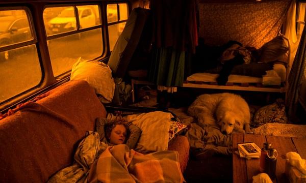 Một gia đình, 3 chú chó và một đàn vịt trú ẩn hỏa hoạn an toàn nhờ chiếc xe buýt cũ - Ảnh 2