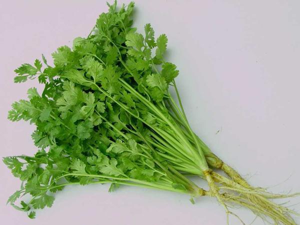 Lợi ích của loại rau rẻ như bèo, Tết nhà nào cũng có mà chưa biết tận dụng - Ảnh 2