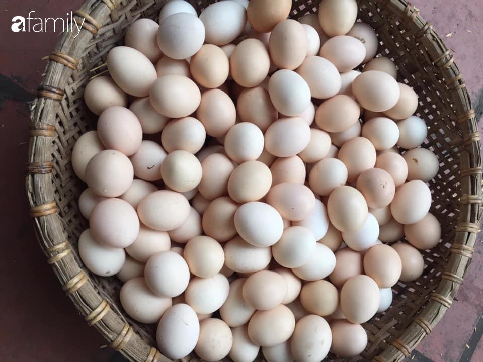 Người bán trứng lâu năm tiết lộ 5 mẹo giúp bà nội trợ Việt chọn chuẩn trứng gà ta, không bao giờ nhầm lẫn với trứng gà công nghiệp - Ảnh 2