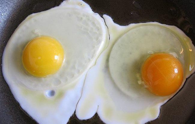 Quả trứng có lòng đỏ sẫm màu khác biệt gì với quả lòng đỏ nhạt? - Ảnh 1