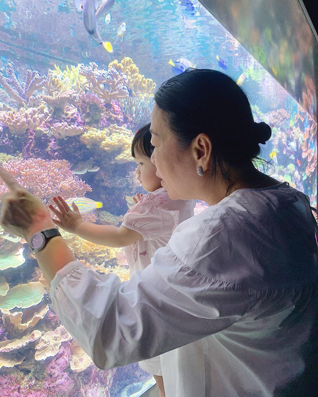 Khoe dạy bơi cho con gái mới hơn 1 tuổi nhưng đặc điểm này trên cơ thể Đặng Thu Thảo lại gây chú ý - Ảnh 2