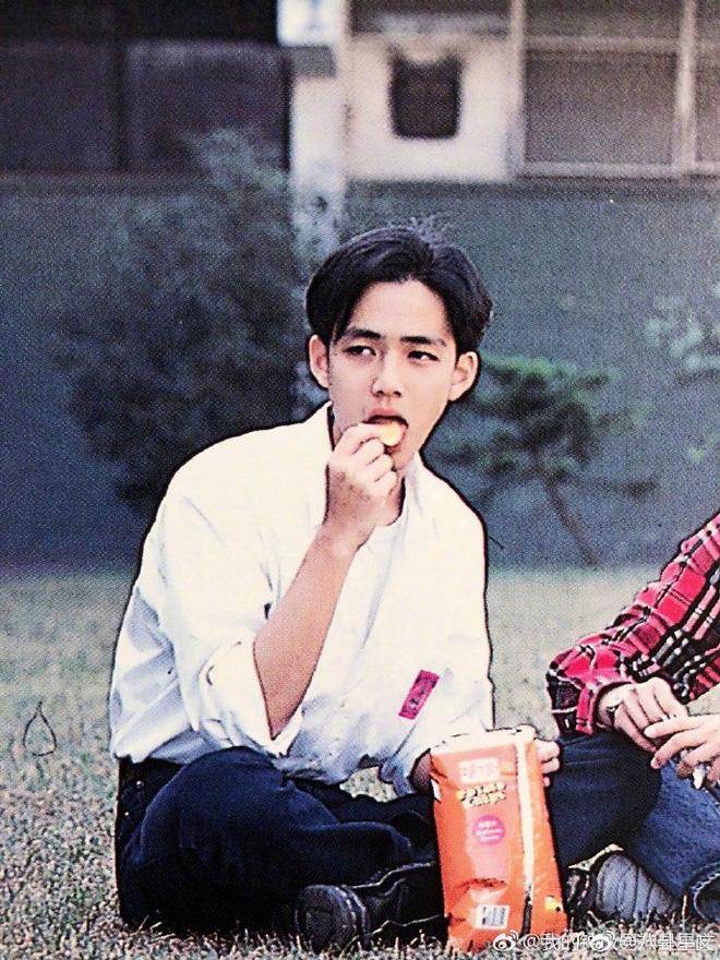Bức ảnh Chung Hán Lương hồi năm 18 tuổi đang gây sốt, fan cảm thán: Đây mới đúng là Hà Dĩ Thâm thời trẻ chứ! - Ảnh 4
