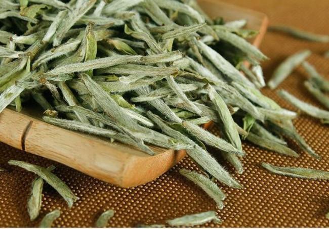 Uống trà trắng đem lại quá nhiều công dụng tuyệt vời cho sức khỏe! - Ảnh 3