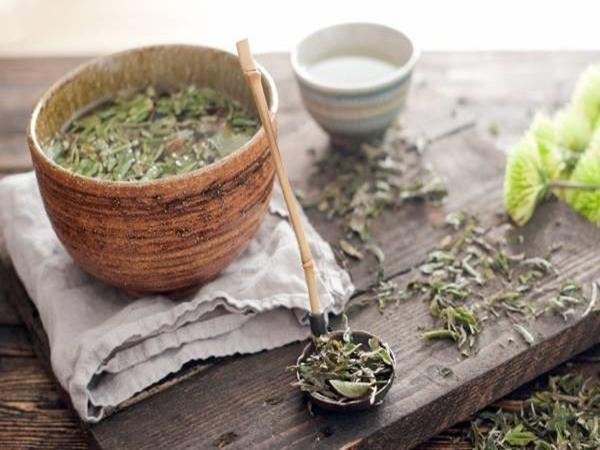 Uống trà trắng đem lại quá nhiều công dụng tuyệt vời cho sức khỏe! - Ảnh 5