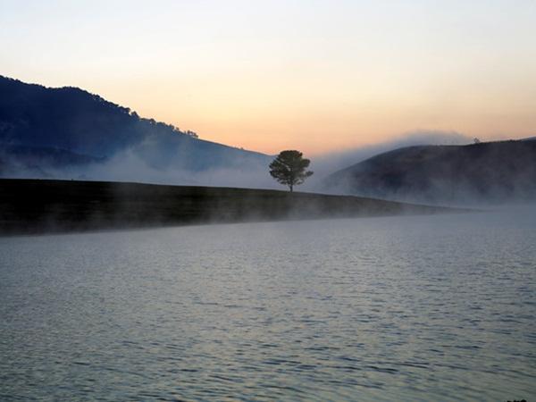 Mắc bệnh ung thư, chàng trai để lại thư tuyệt mệnh cạnh cây thông cô đơn rồi nhảy hồ Suối Vàng tự tử - Ảnh 1