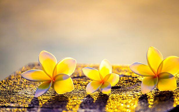 10 điều 'bất lực' trong đời người, thấu hiểu sẽ giúp bạn đạt được nhiều hơn - Ảnh 1