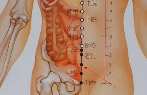 Đông y Trị liệu: Hướng dẫn cách xoa bụng dưỡng sinh và hỗ trợ chữa bệnh ở hệ tiêu hóa - Ảnh 2
