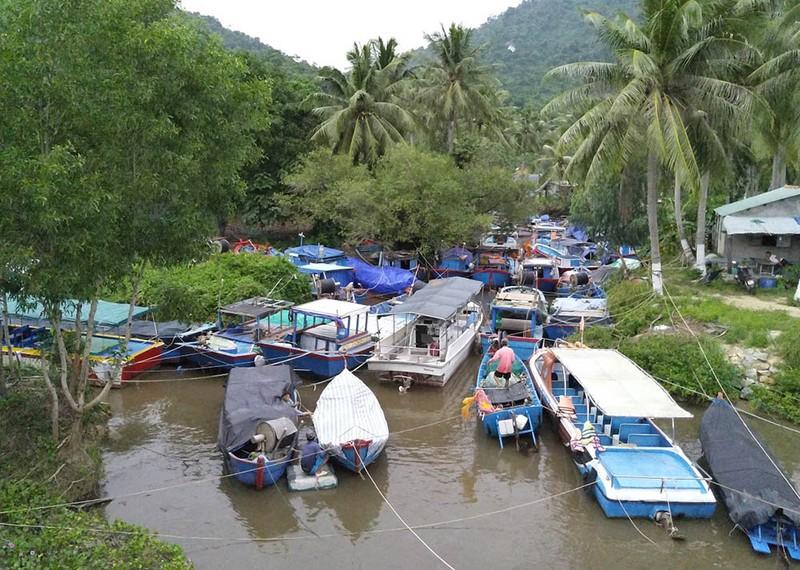 Cuộc sơ tán dân tránh bão số 6 lớn nhất ở Phú Yên - Ảnh 6