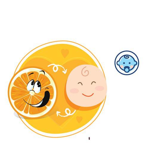 Mang thai tháng thứ 4: Mẹ bầu đang tận hưởng những ngày dễ chịu nhất của thai kỳ - Ảnh 3