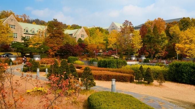 Kiến trúc độc lạ ở ngôi trường chỉ có nữ giới lớn nhất Hàn Quốc - Ảnh 9