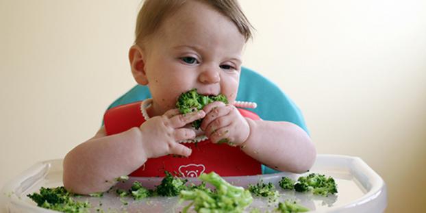 5 thực phẩm tốt nhất dành cho bé tập ăn dặm chỉ huy - Ảnh 1